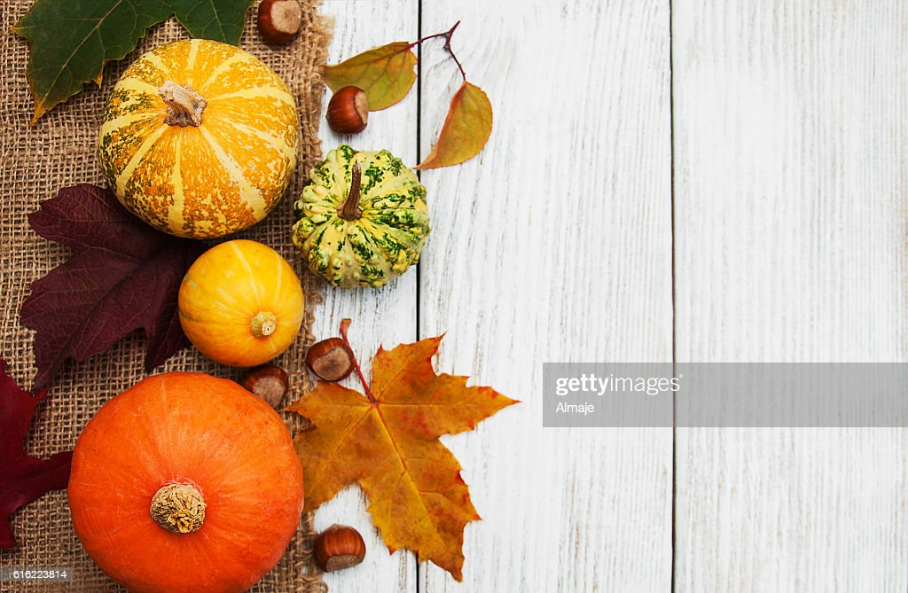 Pumpkin and leaves : Stockfoto