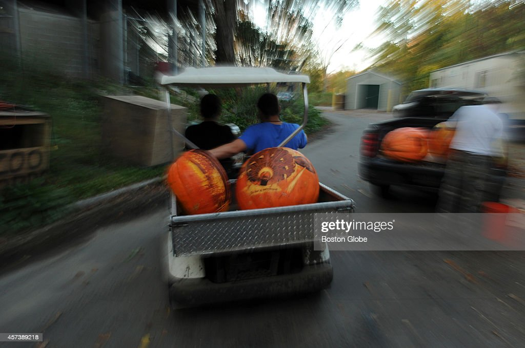 Pumpkin art known as intricates are transported to the different exhibits at the JackOLantern festival at Roger Williams Zoo in Providence RI on...