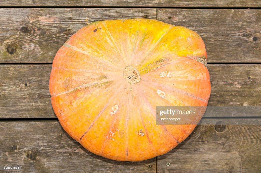 Pumpkin on wooden background : Stock Photo