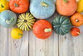 Pumpkins and squashes on wooden boards. Autumn background