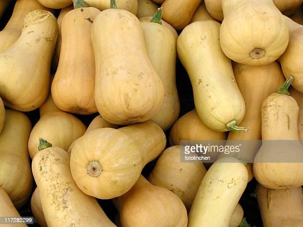 Pumpkins- Courge musquée