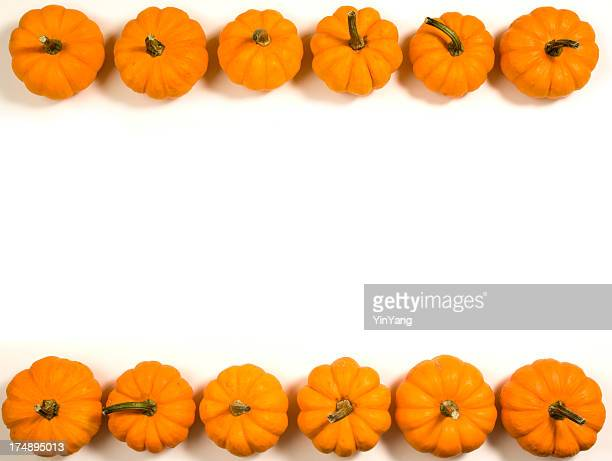 Pumpkins in a Row, Autumn Party Frame Background on White