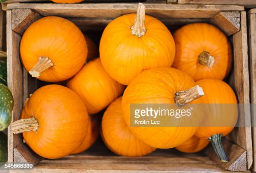 Pumpkins in box : Stock Photo