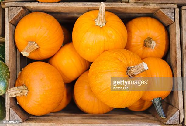 Pumpkins in box
