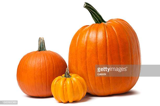 Pumpkins isolated on white with clipping path