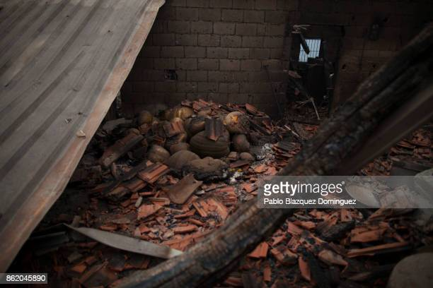 Pumpkins lay on the ground inside a burnt house in the village of Vila Nova near Vouzela on October 16 2017 in Viseu region Portugal At least 30...