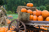 Pumpkins on cart with hay