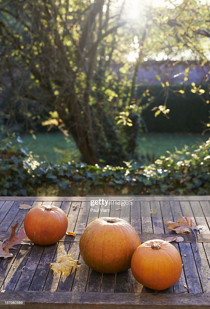 pumpkins on garden table : Stock Photo