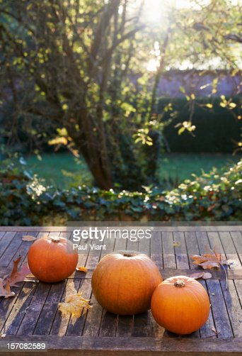 pumpkins on garden table : Stock Photo