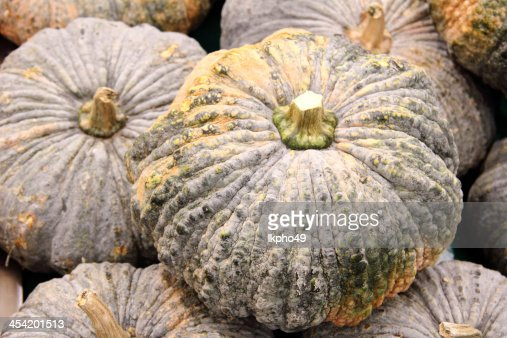 Pumpkins : Foto de stock