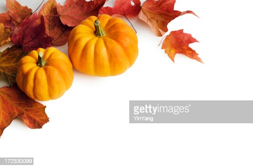Fall Pumpkins Stock Photos and Pictures | Getty Images