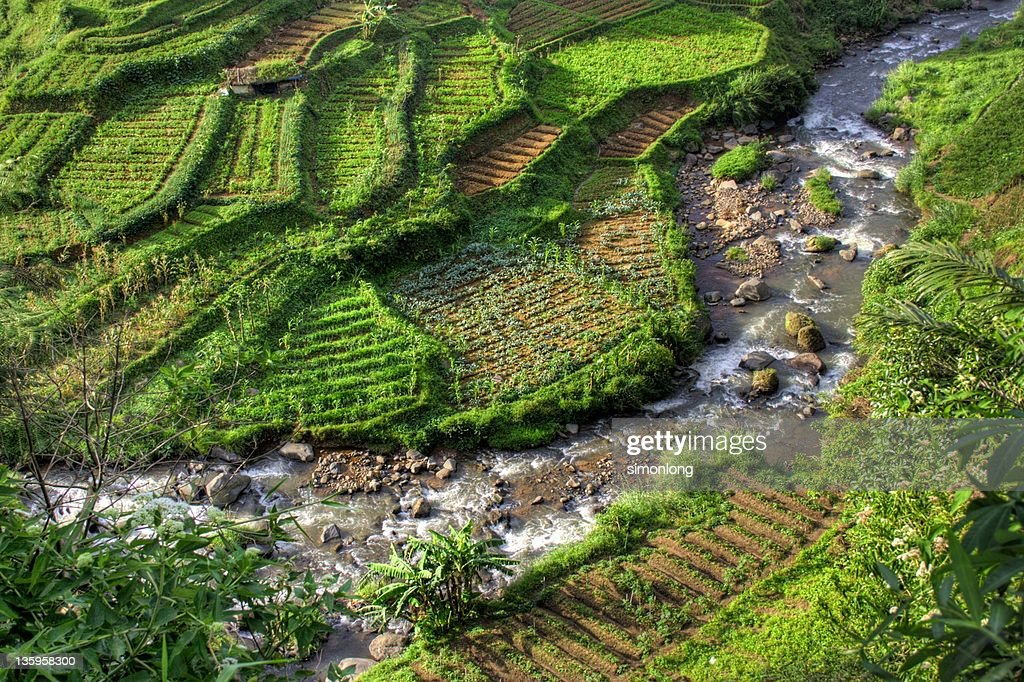 Puncak Indonesia  city images : Puncak River Indonesia Stock Photo | Getty Images