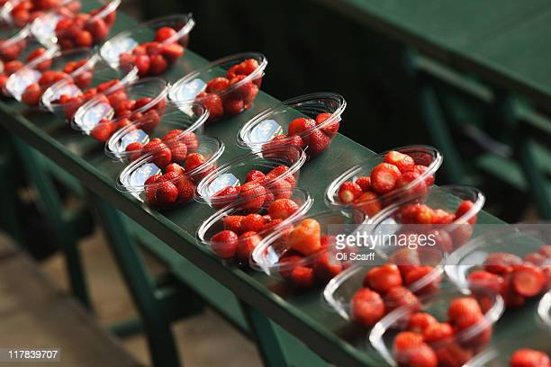 Punnets of strawberries are lined up on Day Eleven of the Wimbledon Lawn Tennis Championships at the All England Lawn Tennis and Croquet Club on July...
