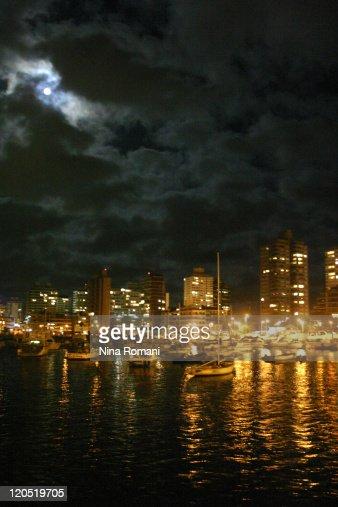 Punta del Este harbor at night