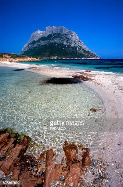 Punta Spalmatore Tavolara island Sardinia Italy