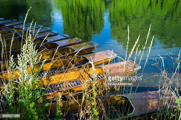 Punts moored on the banks of the River Cam Cambridge United Kingdom