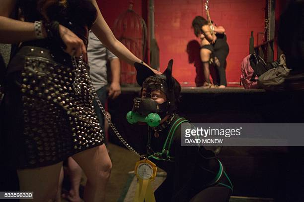Pup EKO roleplays an obedient dog at a dungeon party during the DomCon LA domination convention on May 21 2016 in Los Angeles California The annual...