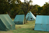 These pup tents are a part of a larger group of tents set up by Boy Scouts.