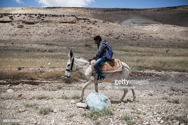 A pupil rides a donkey after a day of lessons at a Palestinian Bedouin of Jahaline tribe school in the area of E1 not far from the settlement of...