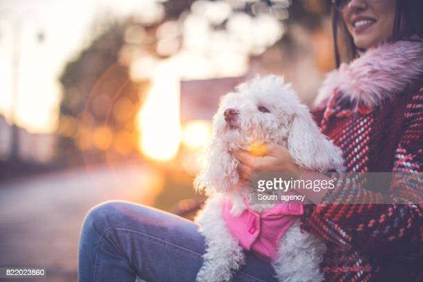 Puppy sitting in her lap