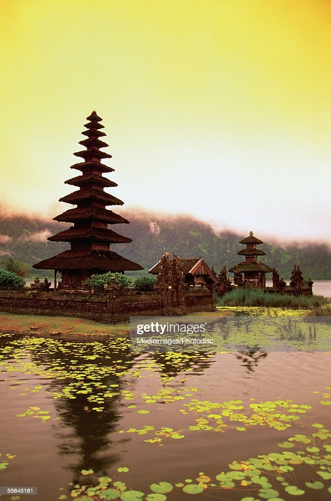Stock options di indonesia