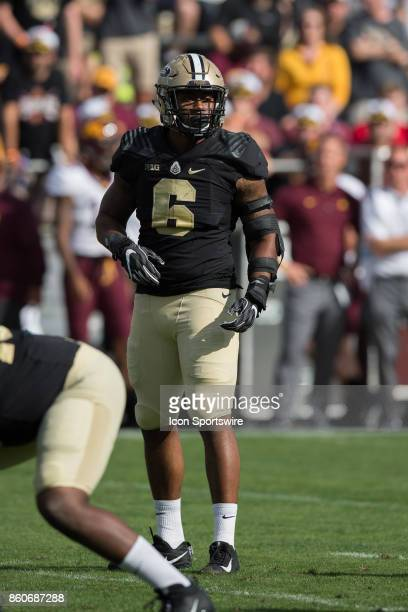 Purdue Boilermakers linebacker TJ McCollum looks to the sidelines during the college football game between the Purdue Boilermakers and Minnesota...