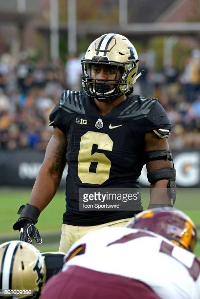 Purdue Boilermakers linebacker TJ McCollum surveys the Minnesota Golden Gophers offense during the Big Ten Conference game between the Minnesota...