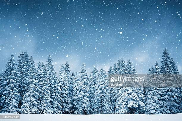 Pure hiver