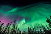 This was taken outside of Fairbanks, Alaska during a strong Aurora storm in January 2016