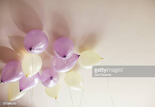 Purple and ivory balloons against ceiling