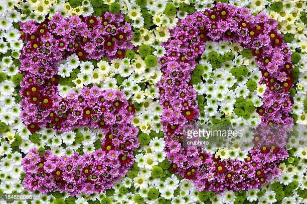 Lila und weiße Blumen in Form von Nummer 50