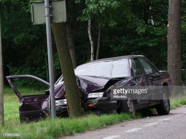 Purple car crashed, head on into a tree near the road