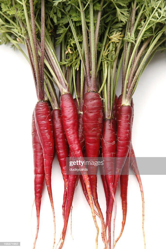 how to grow purple dragon carrot