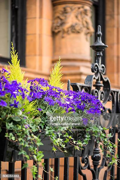 Purple Flowers in Planter Box Outside Office Building