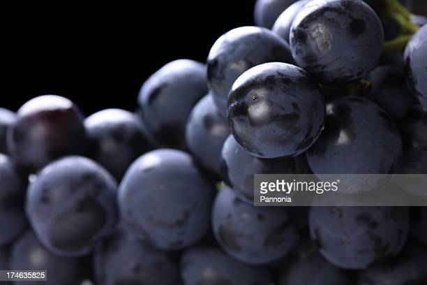 Purple grapes with close-up view