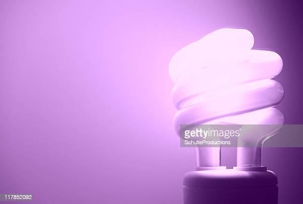 Purple Glühbirne
