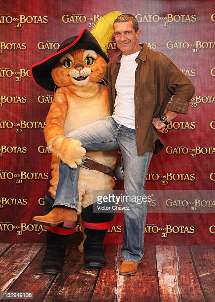 Puss In Boots and Actor Antonio Banderas attend a photocall for 'Puss In Boots' at the Four Seasons Hotel on November 15 2011 in Mexico City Mexico