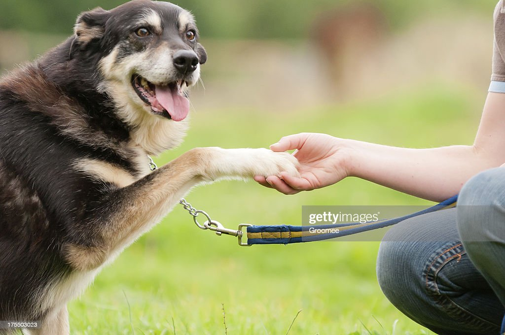 Put your hand in mine. : Stock Photo