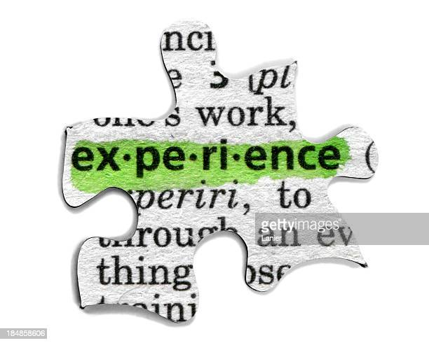 A puzzle piece with the word experience highlighted in green