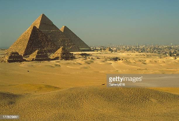 Pyramids & Cairo