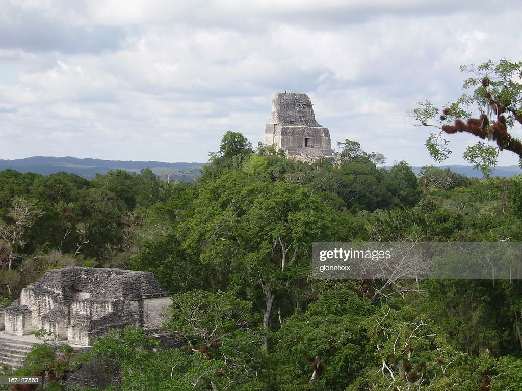 Pyramids in the jungle at Tikal, Guatemala : Stock Photo