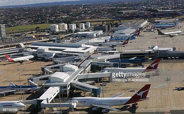 Qantas planes line the apron at Sydney International Airport Australia's busiest airport before a sweeping package of counterterrorism measures were...