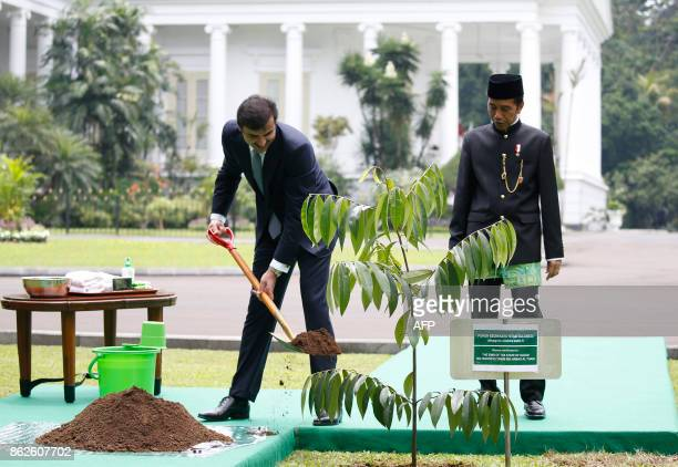 Qatar's Emir Sheikh Tamim bin Hamad alThani uses a shovel beside Indonesia President Joko Widodo during a tree planting ceremony at the presidential...