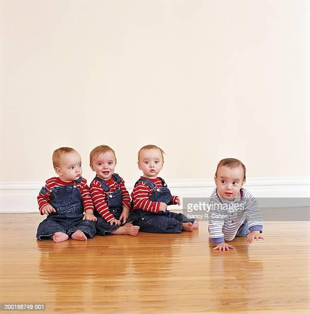 Quadruplet babies (9-12 months) on hardwood floor