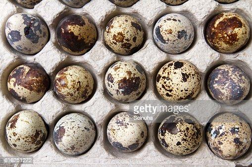 Quail eggs in paper container : Stock Photo