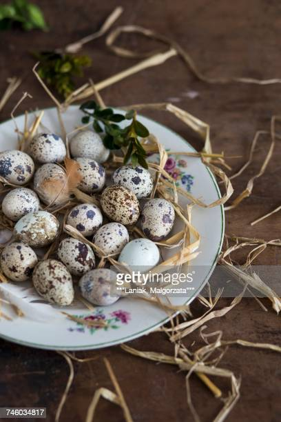 Quails eggs on a plate with straw