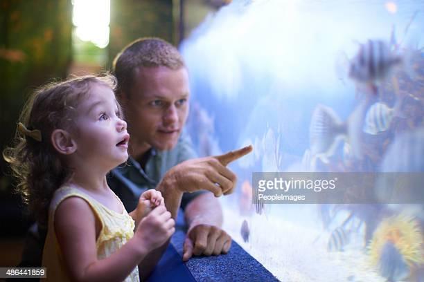 Gute Zeit mit ihrem Vater und die fish