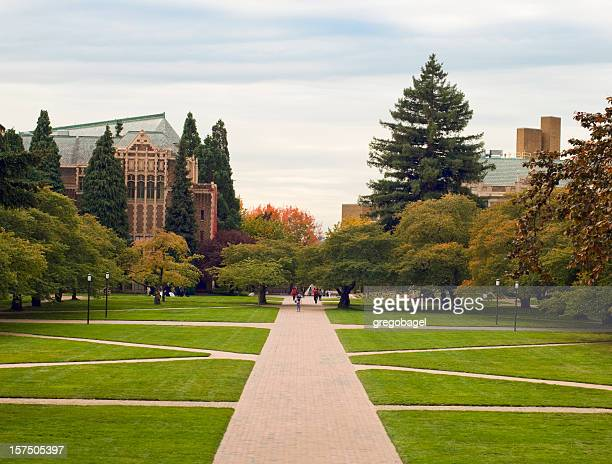 Quandrangle prato presso la University of Washington