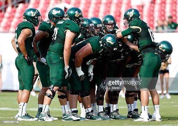 Quarterback Bobby Eveld of the green team of the South Florida Bulls directs the offense during the annual Spring Game at Raymond James Stadium on...