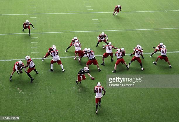 Quarterback Carson Palmer of the Arizona Cardinals hands off the football to runningback Rashard Mendenhall during the team training camp at...